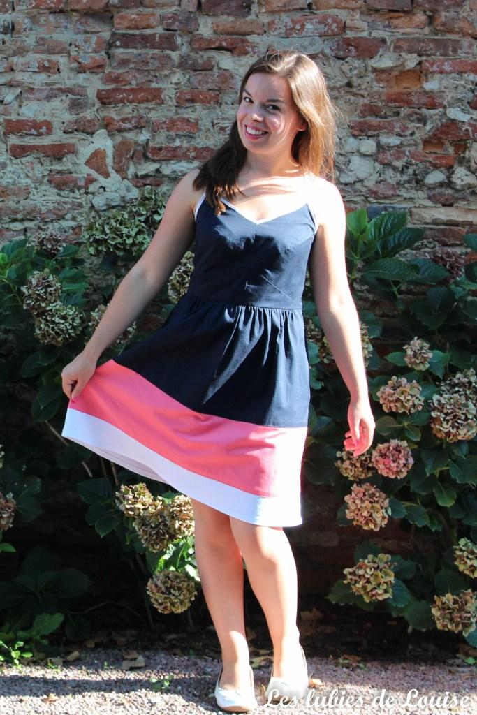 centaurée-tricolore-les-tutoriels-de-louise-25