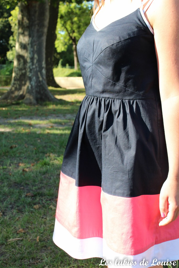 centaurée-tricolore-les-tutoriels-de-louise-28
